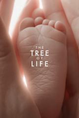 TOL_Baby_foot_1s_w1.2FSNT_web